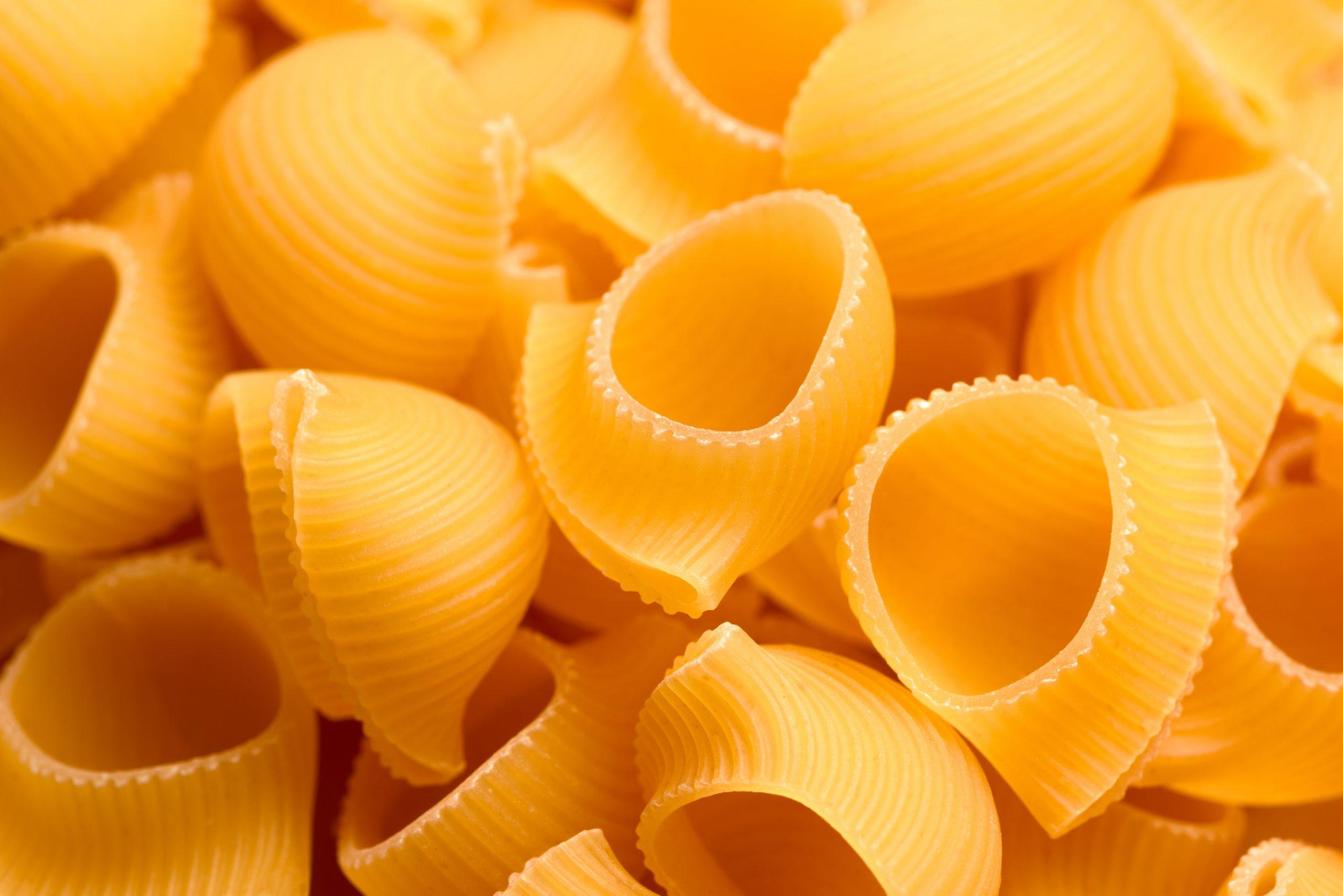 Lumache, pasta tradizionale della cucina Italiana